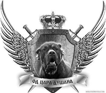 "Kennel of Serbian Defense Dog ""FROM EMPEROR DUSAN"" -"