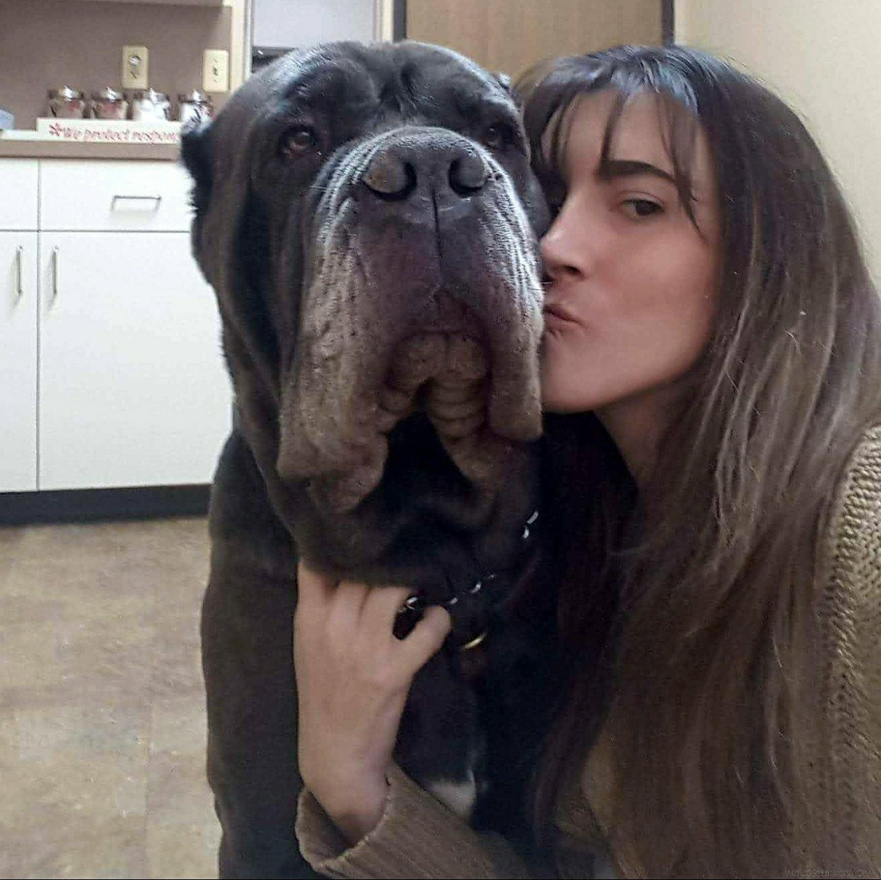 bosco kiss